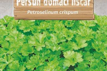 seeds of herbs 1371