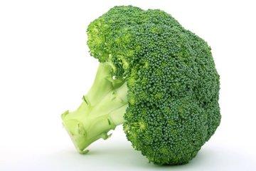 brokoli 1383