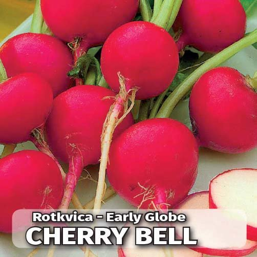 cherry_bell