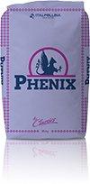 Phenix_iseceno_1