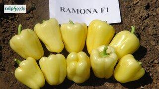 paprika ramona f1