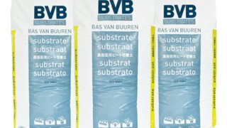 bvb substrati