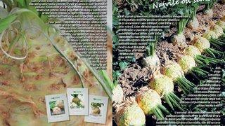 prospekti i agrosop katalog