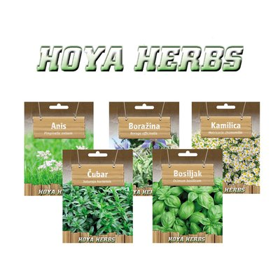 seeds of herbs