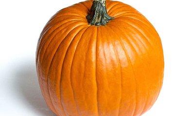 halloween 5049
