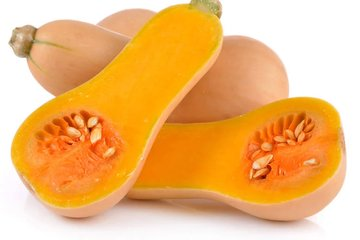 nektar 5055