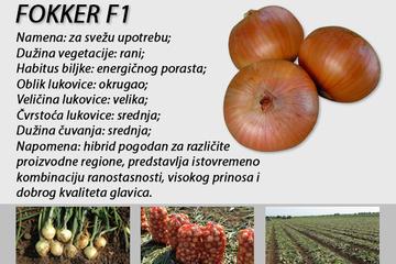 Prezimljujući_luk_FOKKER_F1