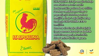 italpollina 4 4 4 4n 4p2o5 4k2o